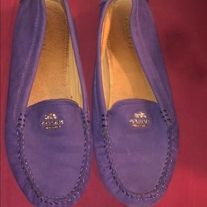Gorgeous Coach loafers